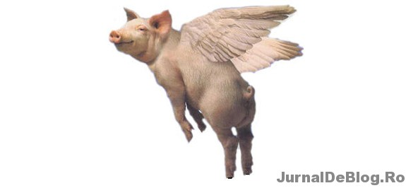 Porcii zboara