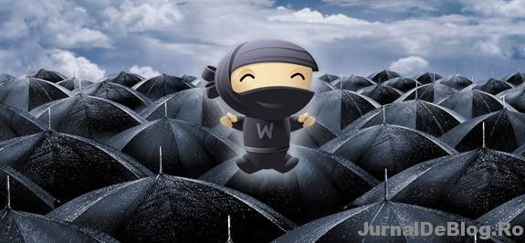 Cum sa fii ninja intr-un oras de umbreliti